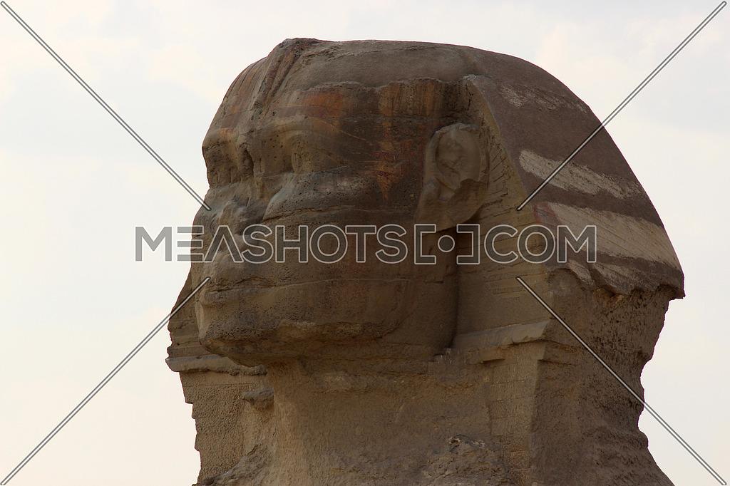 a close photo of sphinx statue in Giza pyramids area , Egypt