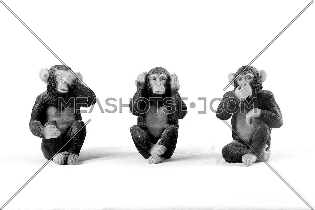 Monkeys no hear, no see, no talk concept