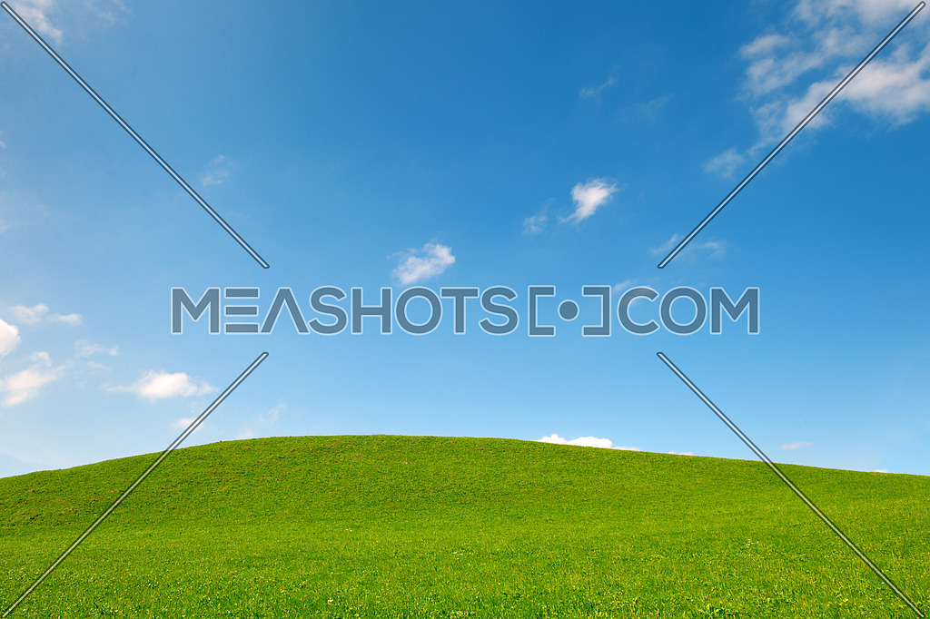 photo for green field of grass and perfect blue sky background in