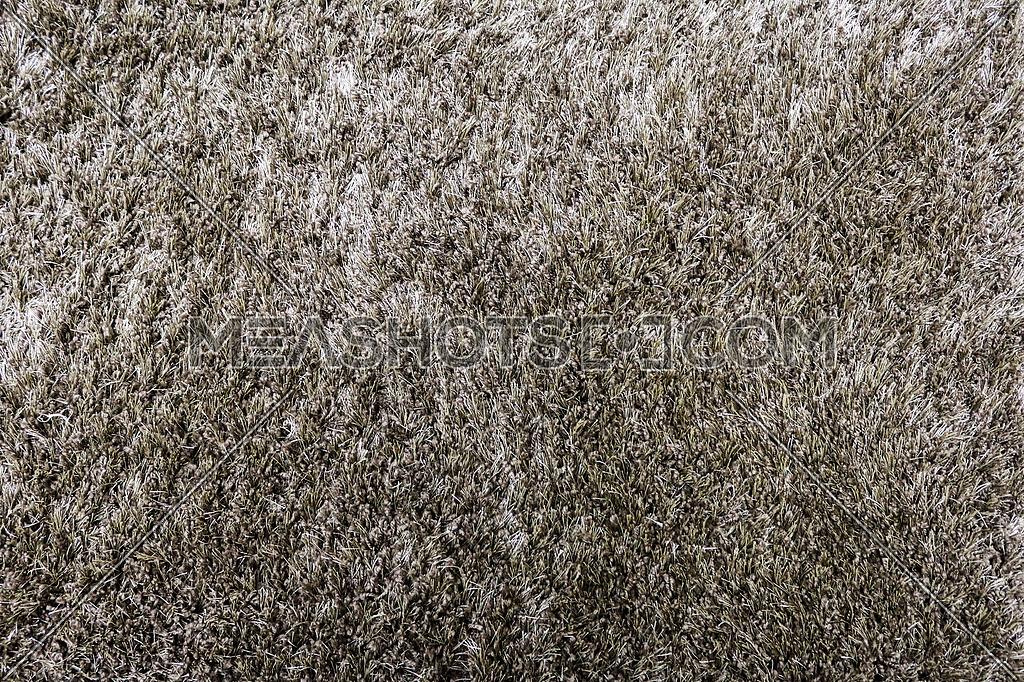 Golden Beige texture - Shag carpet