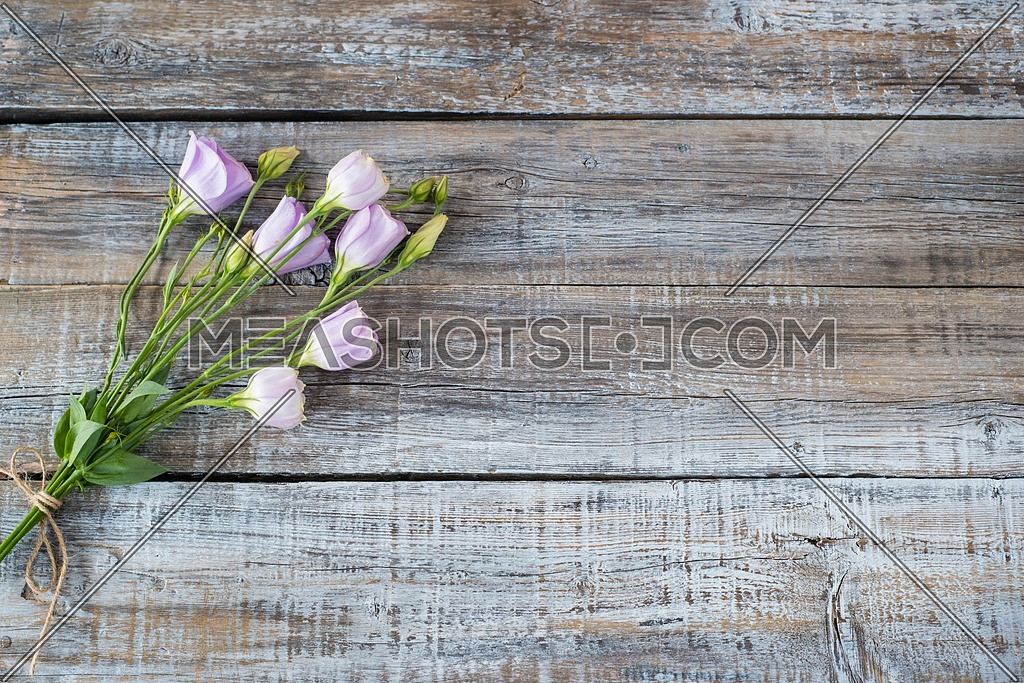 Eustoma flowers on wooden background. Floral background.View from above.