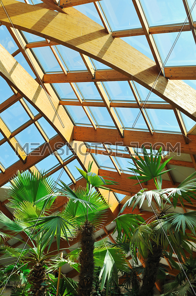 Palm And Wooden Roof Construction 40522 Meashots