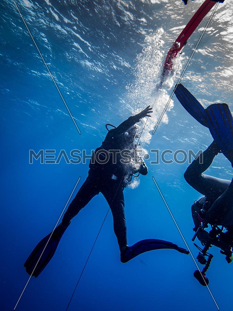 2 scuba divers underwater