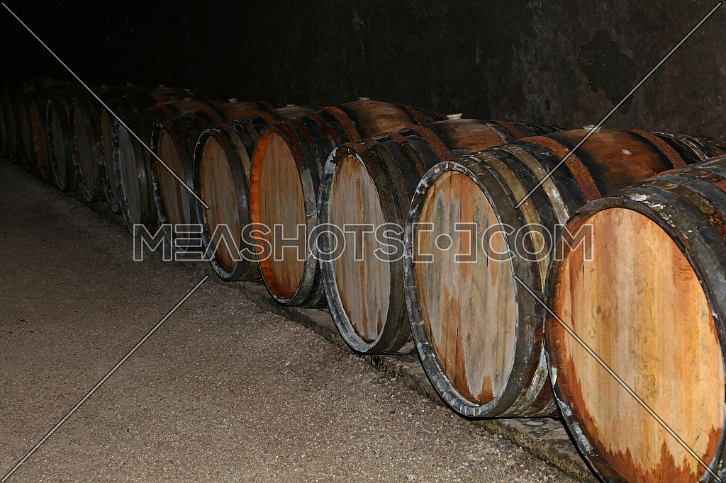 Close up rows of traditional aged natural oak wood wine barrels in winery cellar