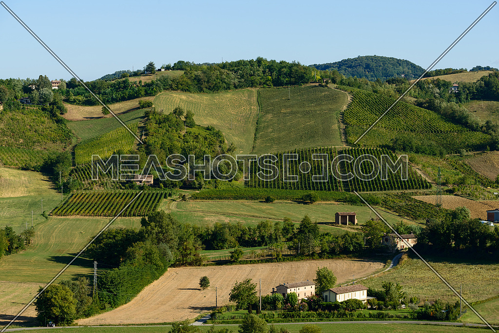 In the picture a beautiful view of the hills of Piacenza (Castell\'Arquato) and its vineyards.
