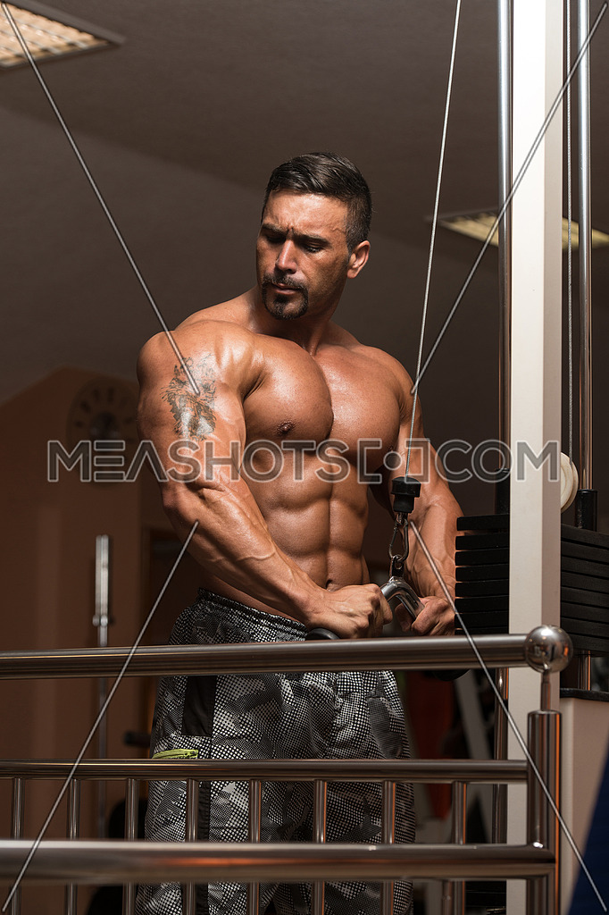 Mexican Bodybuilder Doing Heavy Weight Exercise For Triceps