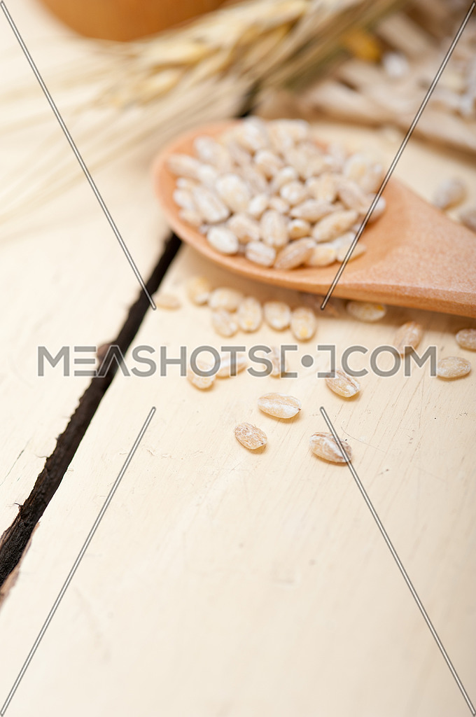 organic barley grains over rustic wood table macro closeup