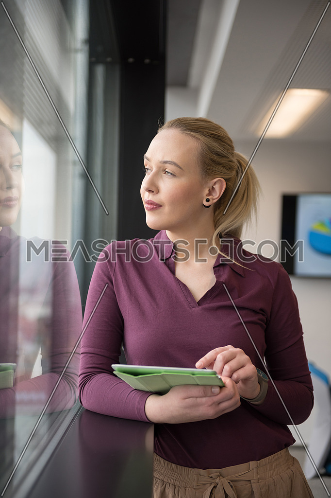 blonde businesswoman working on tablet at office-46513 | Meashots