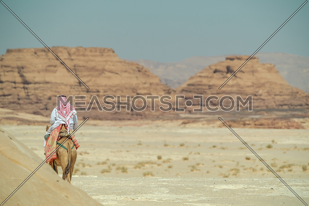 A bediuon male riding a camel at Wadi agarat area in Sinai at day.