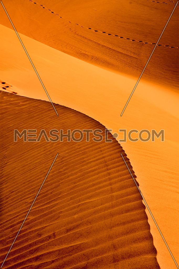 Curvy sand Dunes in the desert
