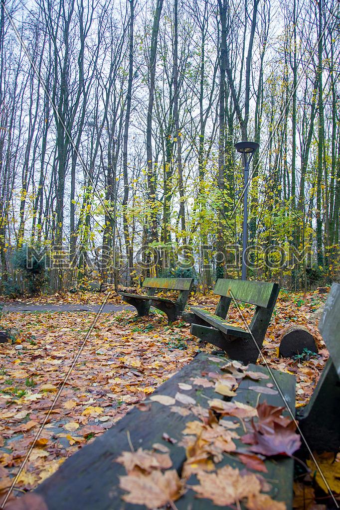 Long shot for Park de la Dodaine, Nivelles, Belgium showing wooden seatings.