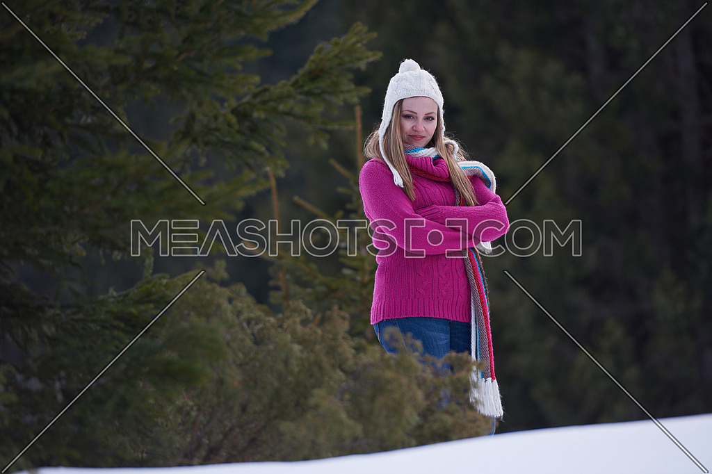 94dab8051bb7 portrait of beautiful young redhair woman in snow scenery-59724 ...