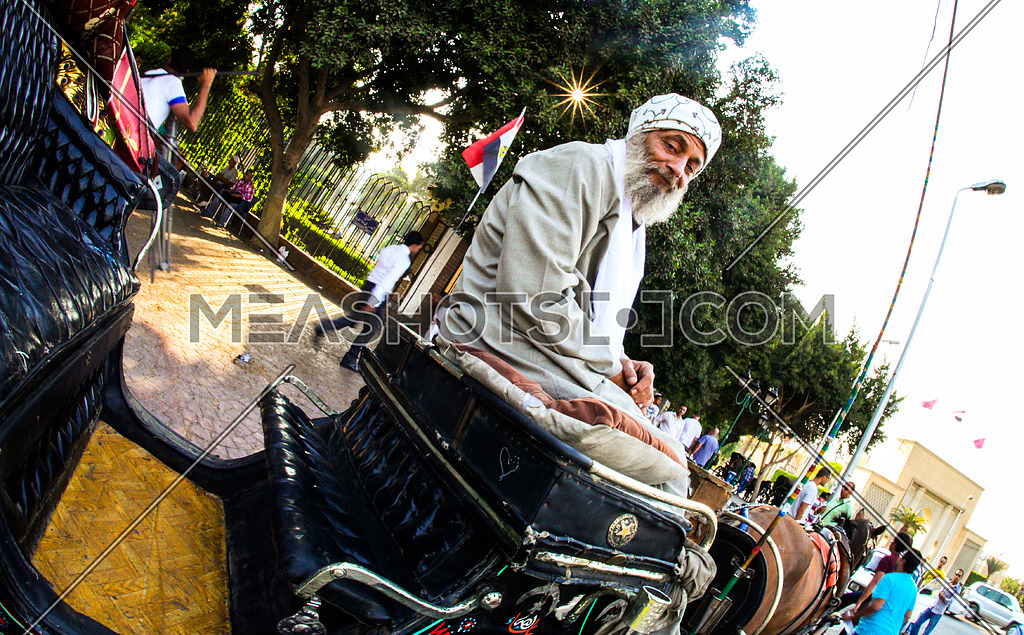 An old man looking to the camera riding a horse carriage (hantoor) in cairo streets
