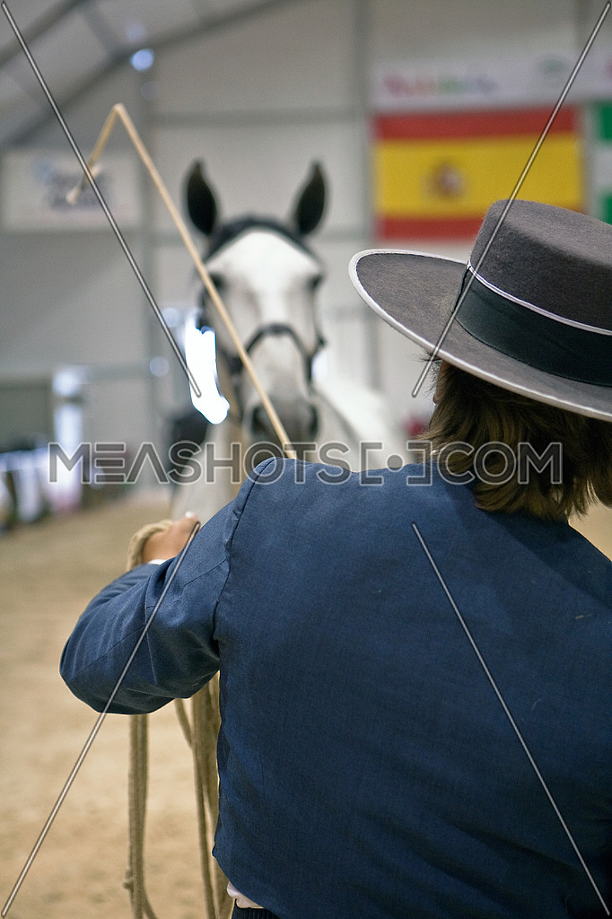 Equestrian test of morphology to pure Spanish horses, Spain