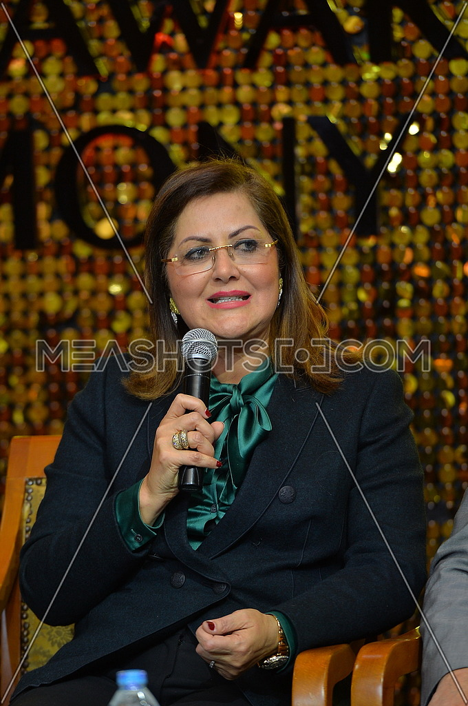 the Egyptian minister of planning Hala El Saed