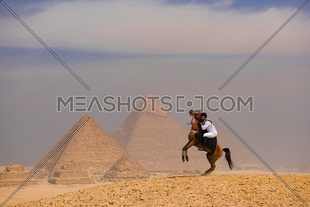 young Egyptian  riding arabian horse in desert, giza platou with grand pyramids in background