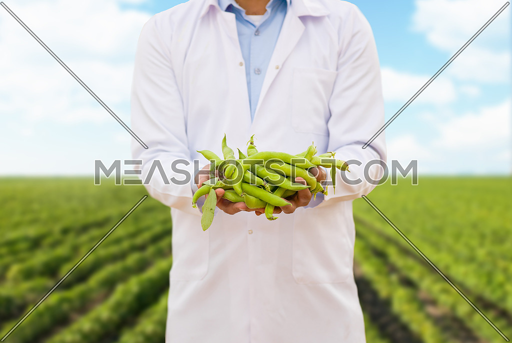 portrait of a young middle eastern man on a large modern farm of vegetables