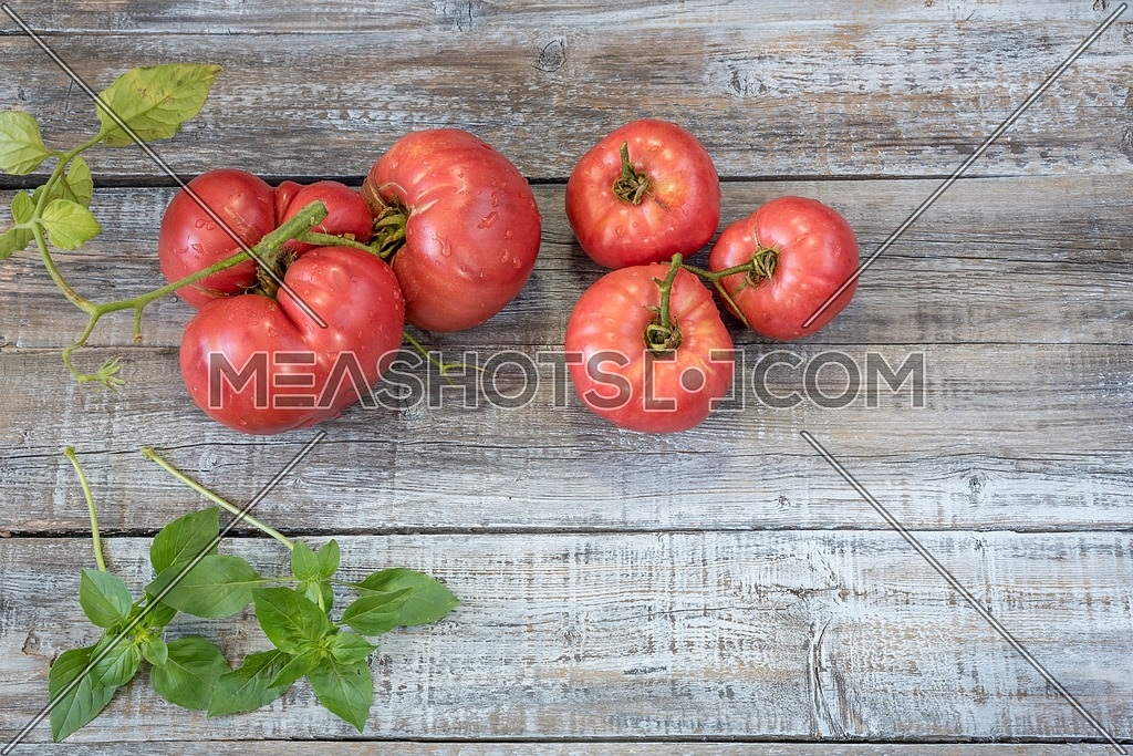 Close-up fresh vegetables for a salad. Ripe, juicy, fresh organic red tomatoes with basil on a wooden background. Agriculture concept. Shallow depth of field.