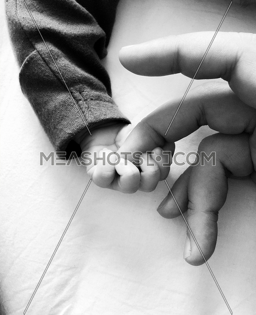 a baby holden parent finger