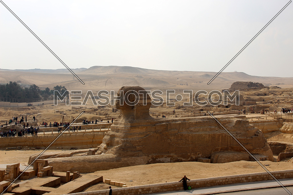a photo of one side of sphinx statue in Giza pyramids area , Egypt