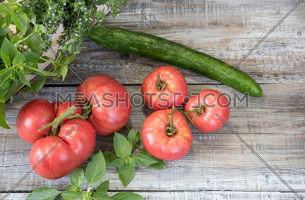 Close-up fresh vegetables for a salad. Ripe, juicy, fresh organic red tomatoes ,cucumber,garlic and basil on wooden table. Agriculture concept
