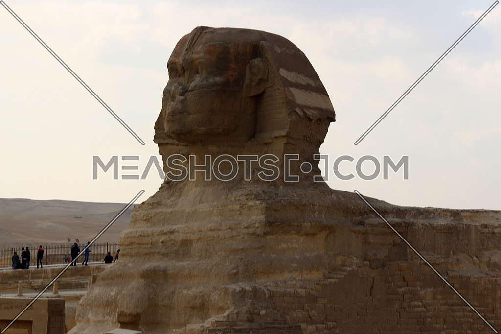 a photo of sphinx statue in Giza pyramids area showing the face features , Egypt