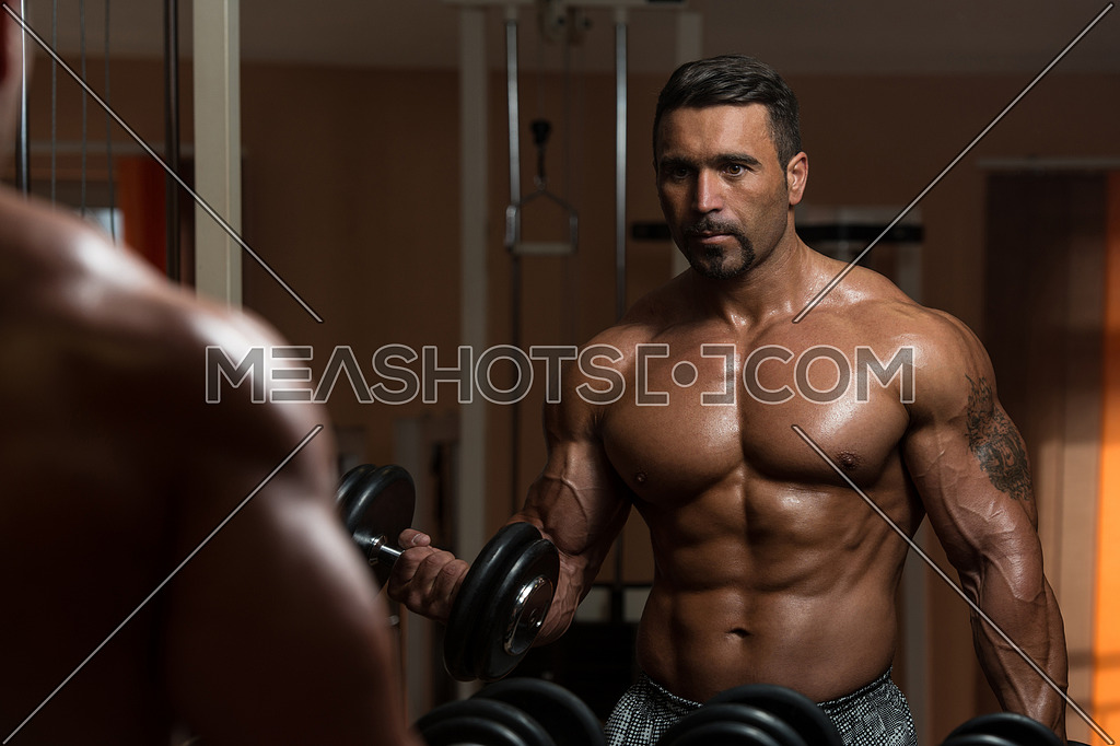 Latin Bodybuilder Working Out Biceps - Dumbbell Concentration Curls