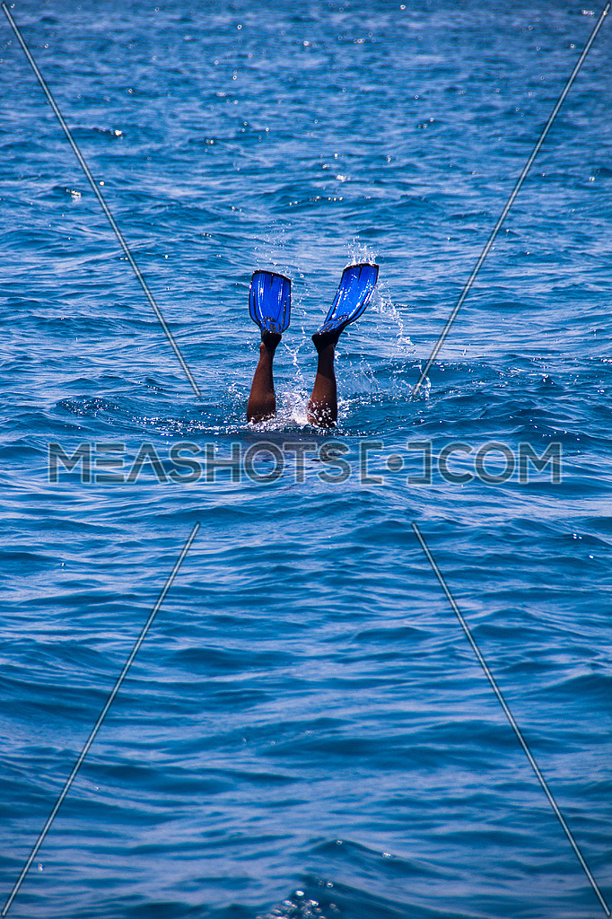 legs showing out of the water wearing flippers at the red sea in a boat diving snorkeling trip in liveaboard marine vessel mouring on corals reefs in Egypt