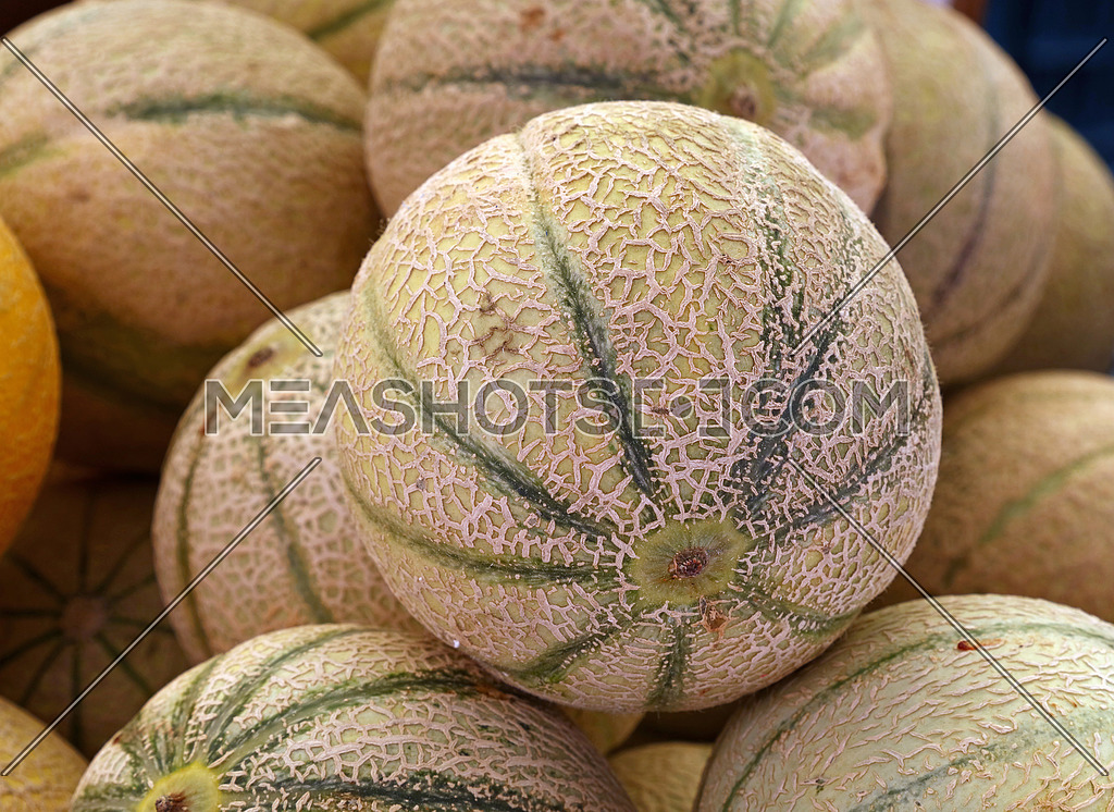 Close Up Fresh Cantaloupe Melons On Retail Display 208369 Meashots I cut up a whole cantaloupe but soon realized that it was not quite ripe yet. meashots