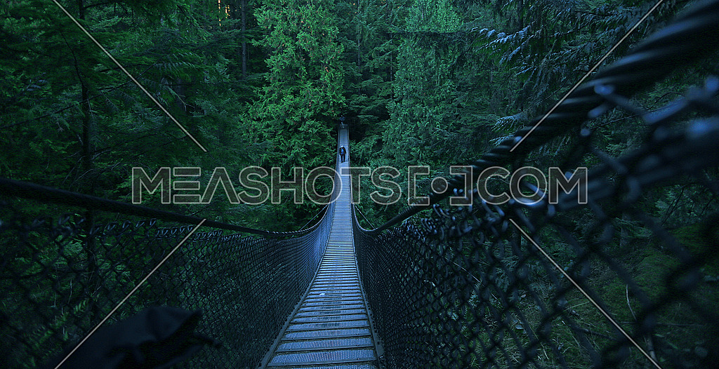 A man walking on a suspension bridge in the forest