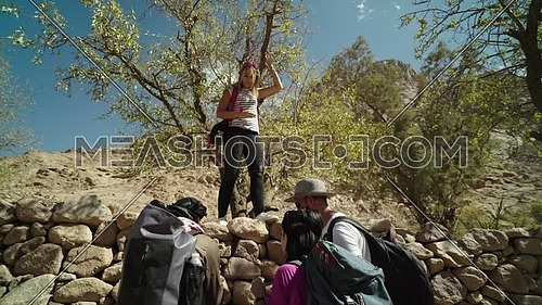 Reveal shot for group of tourists and one standing upon fence of rocks collecting almonds from tree with bedouin guide showing almond trees while explore Sinai Mountain for wadi Freij at day.