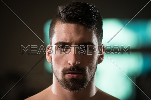 Portrait Of A Handsome Young Man  With Beard