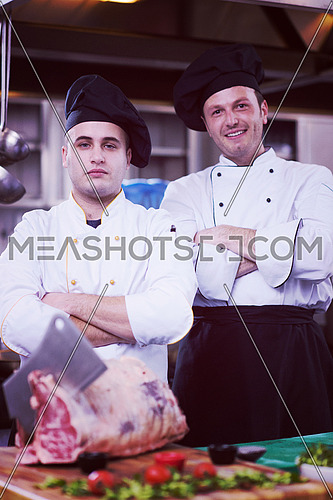 Portrait of two chefs standing together in commercial kitchen at restaurant
