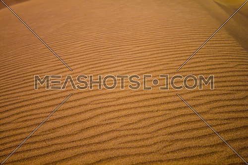 desert waves on sand