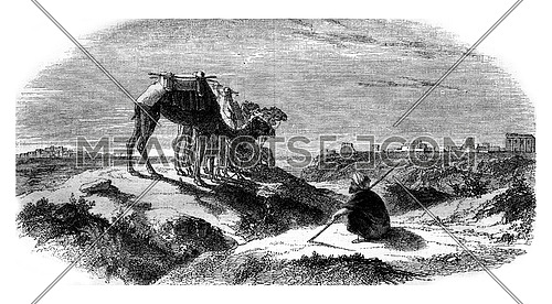 View from the side of Syria, vintage engraved illustration. Magasin Pittoresque 1847.