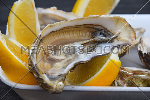 Close up portion of fresh open raw juicy oysters with lemon wedges on white plastic tray on a table, high angle view