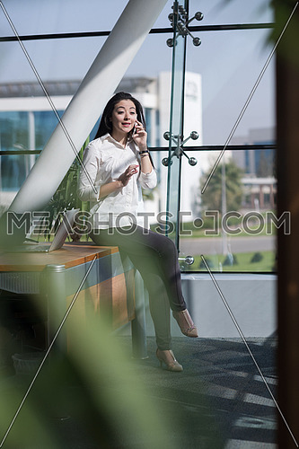 young female executive talking on the phone in a modern office