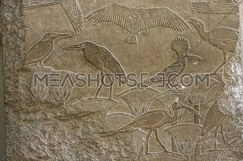 pharaonic drawings on the wall in the Egyptian museum