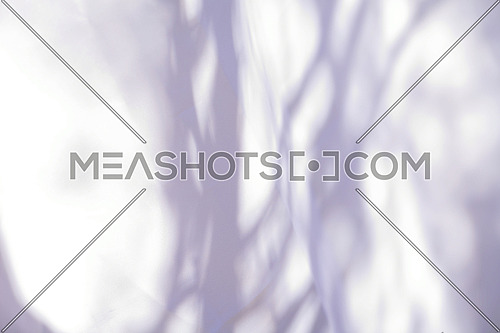 simple white abstract nature shadow background