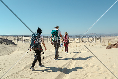 Long shot for group of tourists walking on sands with bedouin guide while exploring Sinai Trail from Ain Hodouda at day.