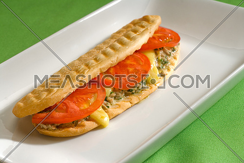 tuna tomato and cheese grilled panini sandwich close up on a plate