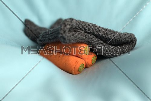 Carrot soft toy and kid's grey bunny hat on a baby blue layer