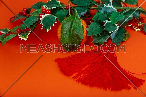Chinese New Year Decoration Red Symbolizes Good Luck decorations and tangerines