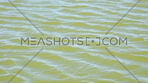 Waves and ripples run in the wind on green water surface of lake, high angle view, slow motion