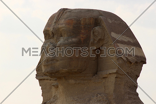 a close photo of sphinx statue in Giza pyramids area , Egypt