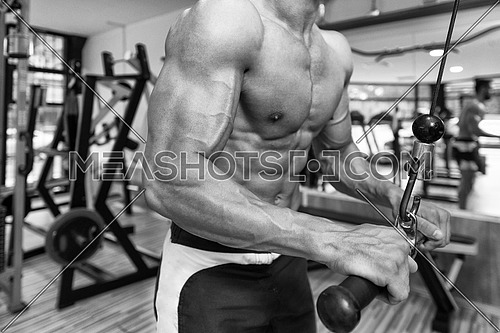 Young Bodybuilder Exercise Triceps In The Gym - He Is Performing Two Arm Triceps Push Downs