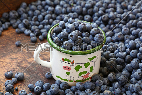 Fresh ripe blueberry berries heap in old vintage white enamel metal mug at retail farmers market stall, close up, high angle view