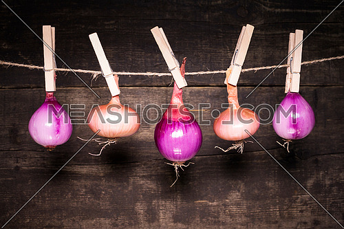 Onions hanging on a rope with wooden background