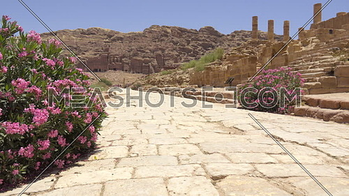 Left pan of the roadway inside of Petra