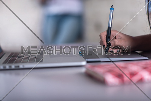 Young informal Middle Eastern businesswoman working on laptop in a modern office
